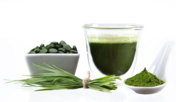 Clorella, come si usa, ingredienti, composizione, funziona
