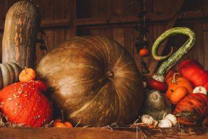 Pumpkin Seed Pro, originale, sito ufficiale, Italia