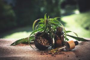 Cannabis Vital Oil, composizione, ingredienti, funziona, come si usa